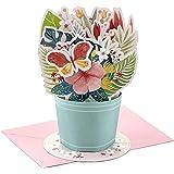 Hallmark Paper Wonder Birthday or Congratulations Pop Up Card (Displayable Bouquet)