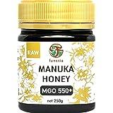 【MGO550+】マヌカハニー 250g『メチルグリオキサール含有量 550mg/kg以上』
