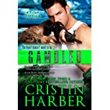 Gambled and Chased (Titan Book 4) (English Edition)