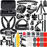 Neewer 53-In-1 Action Camera Accessory Kit Compatible with GoPro Hero 9 8 Max 7 6 5 4 Black GoPro 2018 Session Fusion Silver