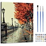 Paint by Number with Frame-DIY Digital Canvas Oil Painting Adults Kids Gift Kits with Wooden Frame Pre-Printed Canvas Art Hom