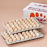 太陽卵 ピンク卵 Mサイズ 90個入り 通常便 業務用 有名ホテル使用