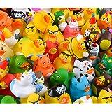 Rhode Island Novelty Assorted Rubber Ducks | Set of 100