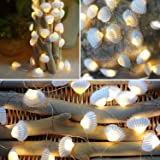 Lightingift Seashell String Lights, Beach Themed 13.8 ft 40 LED Lights, Battery Operated with Remote for Wedding Summer Holid