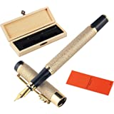 SMOOTHERPRO Fountain Pen Fine Nib with Deluxe Dragon Clip Matt Textured Barrel Converter Cartridges Included for EDC Business
