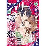 恋愛白書シェリーKiss vol.11 [雑誌]