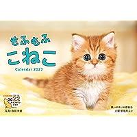 【Amazon.co.jp限定】もふもふこねこ(特典:森田米雄氏撮影「スマホ壁紙に使える可愛いこねこ画像」データ配信…