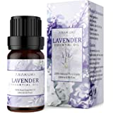 ASAKUKI Lavender Essential Oil, 100% Pure Therapeutic Grade Aromatherapy Oil 10ML, Natural Plant Extract Scented Oil for Diff