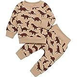 Toddler Baby Boy Girl Clothes Sets Dinosaur Print Long Sleeve Pocket Top Hoodie Pullover Pants Sets Sweatshirt