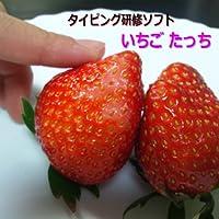 いちごたっち(タイピング研修アプリ)