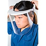 TheLifeShield Face Shield REUSABLE PPE Made in USA
