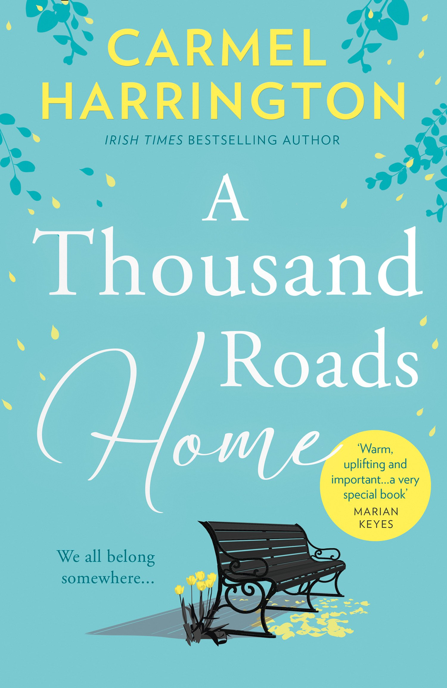 A Thousand Roads Home: The most gripping, heartwrenching page-turner of the year! Click on image for further info. 2