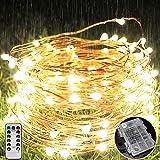 LEDイルミネーションライ ウォームホワイト ホワイト ワイヤーライトフェアリーライト 銅線 電池式8モード 点滅ライト led クリスマス 室内 外兼用 パーティー 飾りライト 防水LEDイルミネーションライト ストリングライトフェアリーライト(1