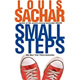 Small Steps (Holes Series)