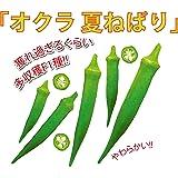 「オクラ苗 夏ねばりF1」【9cmポット苗/お買い得4個セット】自社農場から新鮮出荷!!丈夫で作りやすく、圧倒的に多収穫!!丸オクラの決定版!!在来種と比べ早く収穫でき、分枝力旺盛で収量が非常に多いオクラです。果色は濃い緑で莢の曲がりは少ない。小葉で節間がつまり密植栽培が可能です。【即出荷/プライム送料込み価格】