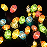 TURNMEON Easter Eggs Decorations String Lights 10 Ft 40 Eggs Led Festive Fairy Copper Wire Lights Battery Operated Easter Hun