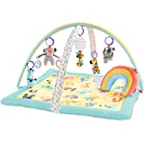 Skip Hop ABC & Me Grow & Play Baby Play Mat & Infant Activity Gym, Multi