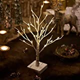 Hairui Lighted Little Birch Tree with Timer 24LED 18IN Battery Operated Pre-lit Twig Tree Gift for Christmas Decoration Table