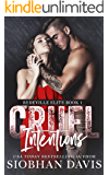 Cruel Intentions: A Dark High School Bully Romance (Rydeville Elite Book 1) (English Edition)