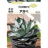 多肉植物 アガベ (NHK趣味の園芸 12か月栽培ナビNEO)