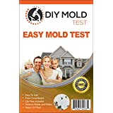 DIY Mold Test Mold Testing Kit (3 Tests). Lab Analysis and Expert Consultation Included