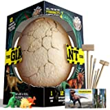 XXTOYS Dino Egg Dig Kit Dinosaur Eggs The Giant Egg with 12 Different Dinosaur Toys Dino Egg Kit for 5 Kids with 2 Digging To