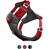 Kurgo Dog Harness for Large, Medium, & Active Dogs, Pet Hiking Harness for Running & Walking, Everyday Harnesses for Pets, Re