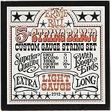 Ernie Ball P02312 Light 5-String Loop End Stainless Steel Banjo Guitar Strings, 9-9 Gauge, Light