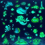 Glow in The Dark Ocean Fish Wall Decals,Ceiling Glowing Under The Sea Wall Decals Removable Sea Wall Decals Stickers Watercol