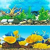 水槽 魚タンク バックスクリーン 両面印刷 背景 水族館ポスター 水槽の飾り -C- (60x40cm)