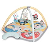 Skip Hop Hug and Hide Activity Gym, Multicolour