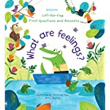Lift-the-Flap First Questions and Answers What are Feelings?