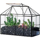 NCYP Glass Terrarium Geometric, Black Grid House Decor, Succulents Cacti Flower Pot, Air Plants Box Planter, Miniature Contai