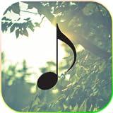 癒やしの音楽