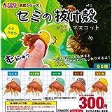 漢方 セミ の 抜け殻