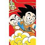 ドラゴンボール FVGA(480×800)壁紙 亀仙人,クリリン,孫悟空