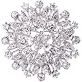 EVER FAITH Women's Austrian Crystal Elegant Flower Leaf Bridal Corsage Brooch Pin Clear Silver-Tone