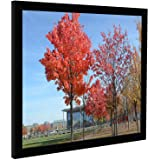 Medog 10x12 inch Satin Black Picture Frame Black 10 by 12-Inch Picture Poster Frame, Smooth Finish, Non-Glass Without Mat for