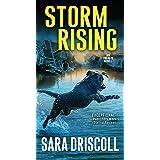 Storm Rising: 3