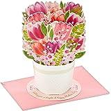 Hallmark Paper Wonder Pop Up Mothers Day Card (Bouquet of Tulips)