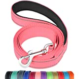 FunTags 6FT Reflective Dog Leash with Soft Padded Handle for Training,Walking Lead for Large & Medium Dog,1 Inch Wide,BABYPIN