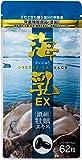 販売実績15年の濃縮牡蠣エキス 「海乳EX」 (31日分/62粒)亜鉛 グリコーゲン アルギニン ビタミン アミノ酸 ミ…