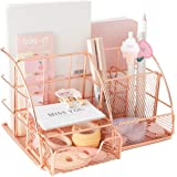 Rose Gold Desk Organizer with Drawer,File Tray and 4 Upright Sections for Pen,Marker,Paper etc, Mesh Metal Multi-Use Statione