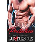 Under His Protection (Brie's Submission Book 14)