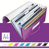 LEITZ ライツ ファイルケース ワオ プロジェクトファイル A4 パープル 4589-00-62