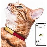 Catlog 【月額料金プラン】食事や運動など愛猫の健康変化に気付けるスマート首輪 見守り 留守番 おしゃれ スタイリッシュ 軽い セーフティバックル iPhone & Android対応 (M, 猫鈴ゴールド×レッド)