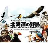 北海道の野鳥