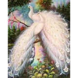 EOBROMD DIY 5D Diamond Painting by Number Kits, Full Drill White Peacocks Crystal Rhinestone Embroidery Pictures Arts Craft H