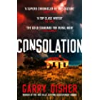 Consolation: Constable Hirsch Mysteries 3 (The Paul Hirsch mysteries) (English Edition)