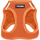Voyager Step-in Air Dog Harness - All Weather Mesh, Step in Vest Harness for Small and Medium Dogs by Best Pet Supplies - Ora